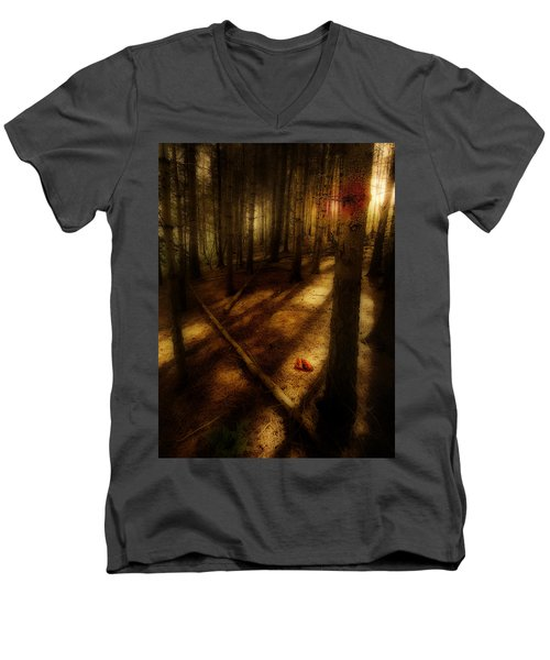 Woods With Pine Cones Men's V-Neck T-Shirt by Meirion Matthias
