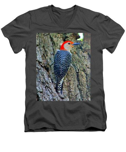Woody 3 Men's V-Neck T-Shirt