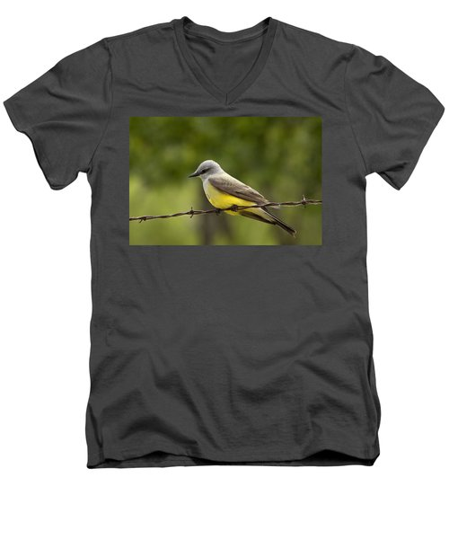 Yellow-bellied Fence-sitter Men's V-Neck T-Shirt by Gary Holmes