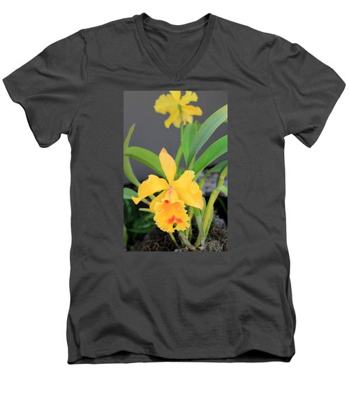 Men's V-Neck T-Shirt featuring the photograph Yellow Cattleya Orchid by Rosalie Scanlon