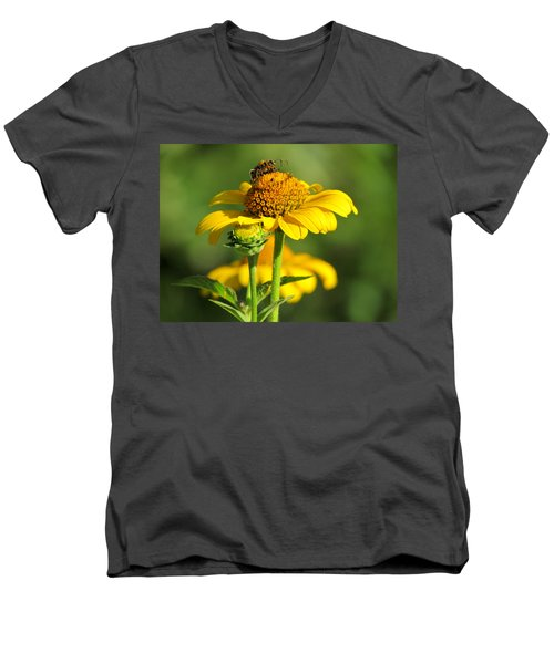 Yellow Daisy Men's V-Neck T-Shirt