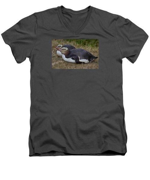 Sleeping Yellow Eyed Penguins Men's V-Neck T-Shirt