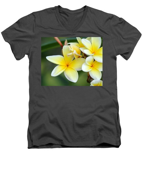 Yellow Frangipani Flowers Men's V-Neck T-Shirt