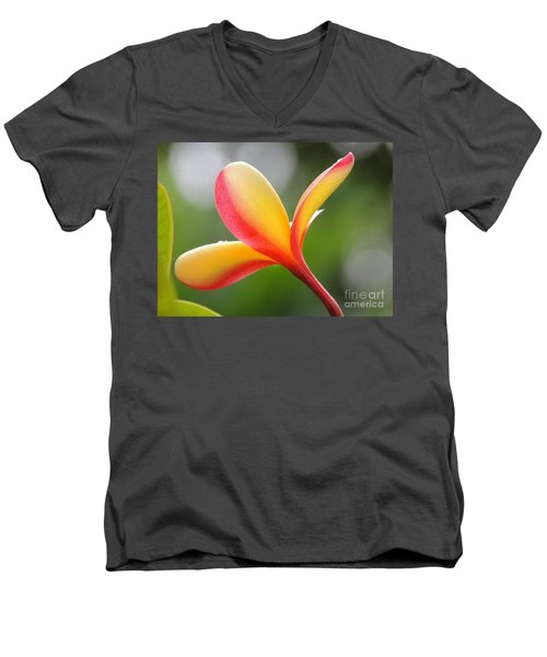 Men's V-Neck T-Shirt featuring the photograph Yellow Pink Plumeria by Kristine Merc