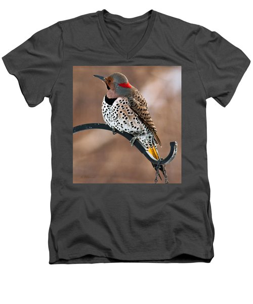 Yellow-shafted Northern Flicker Men's V-Neck T-Shirt