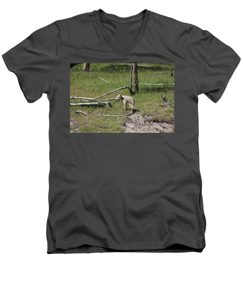 Yellowstone Coyote Men's V-Neck T-Shirt