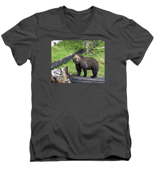 Yellowstone Grizzlies 2 Men's V-Neck T-Shirt by George Jones