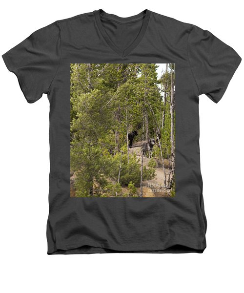 Men's V-Neck T-Shirt featuring the photograph Yellowstone Wolves by Belinda Greb