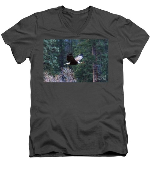 Men's V-Neck T-Shirt featuring the photograph Yosemite Bald Eagle by Vincent Bonafede