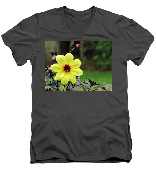You Are My Sunshine Men's V-Neck T-Shirt by Greg Simmons