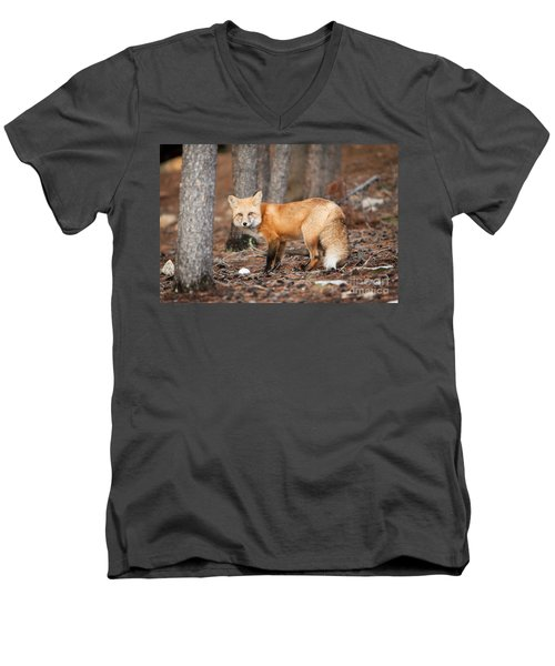 Men's V-Neck T-Shirt featuring the photograph You Caught Me by John Wadleigh