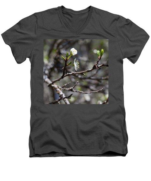 Young Plums Men's V-Neck T-Shirt