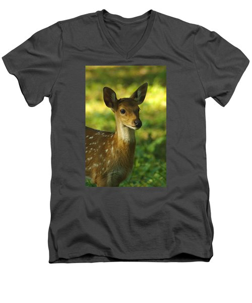 Young Spotted Deer Men's V-Neck T-Shirt by Jacqi Elmslie