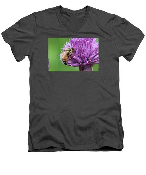 Yummm Chive Nectar Men's V-Neck T-Shirt by Lucinda VanVleck