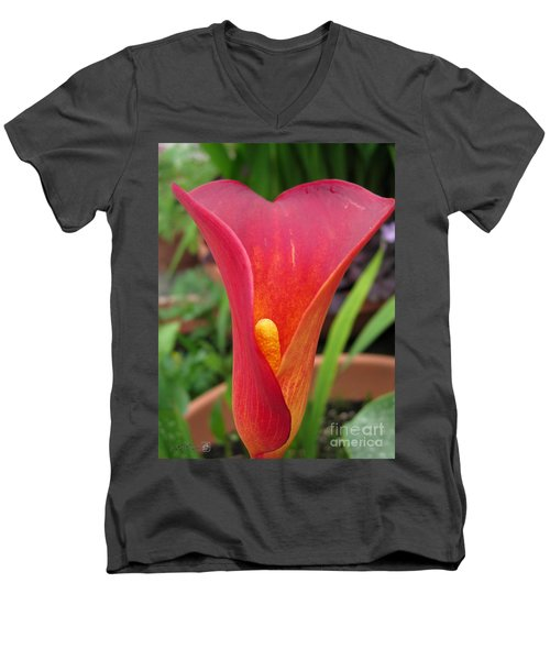 Men's V-Neck T-Shirt featuring the photograph Zantedeschia Named Red Sox by J McCombie