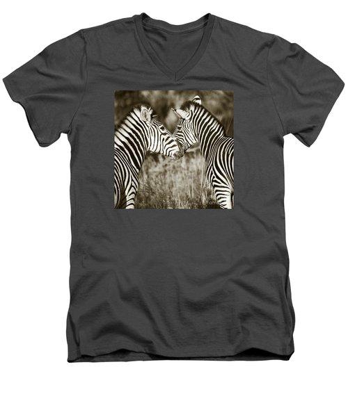 Zebra Affection Men's V-Neck T-Shirt by Liz Leyden