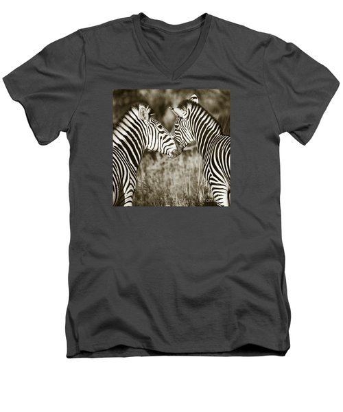 Zebra Affection Men's V-Neck T-Shirt