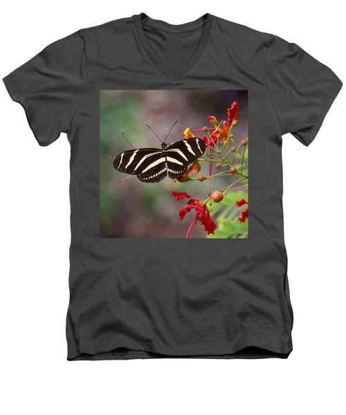 Zebra Longwing Butterfly Men's V-Neck T-Shirt