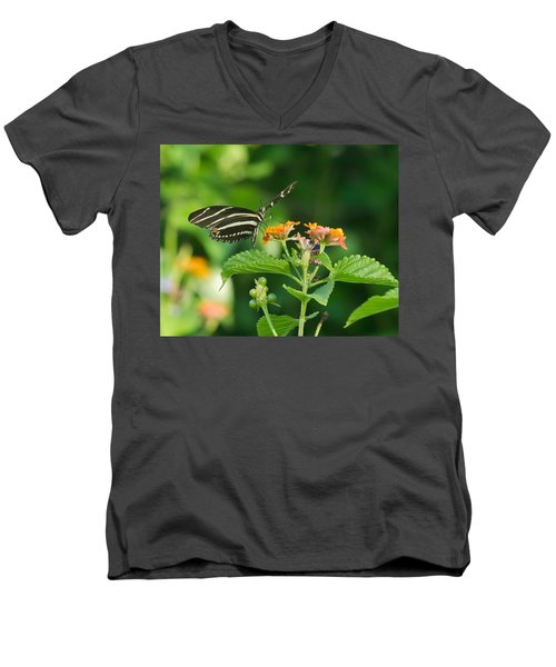 Men's V-Neck T-Shirt featuring the photograph Zebra Longwing by Jane Luxton