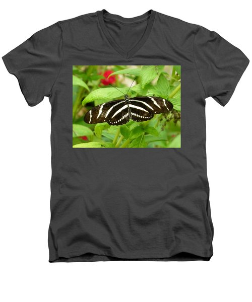 Zebra Longwing Men's V-Neck T-Shirt