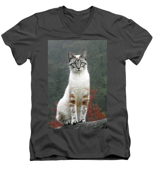 Zing The Cat Men's V-Neck T-Shirt