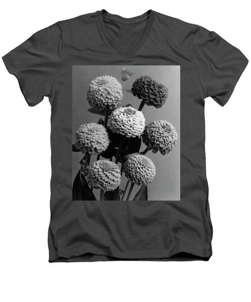 Zinnia Lilliput Flowers Men's V-Neck T-Shirt