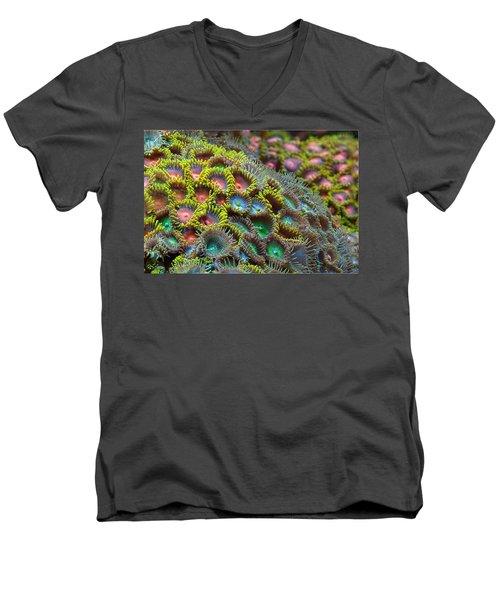 Zoanthids Men's V-Neck T-Shirt