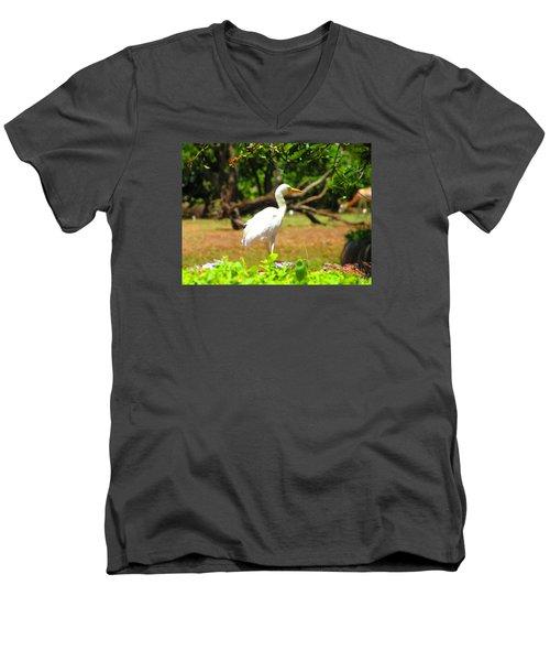 Zoo Men's V-Neck T-Shirt by Oleg Zavarzin