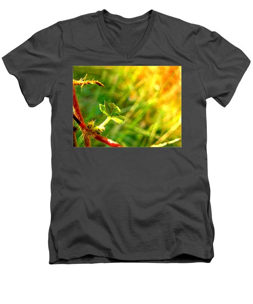 Men's V-Neck T-Shirt featuring the photograph A New Morning by Debbie Portwood
