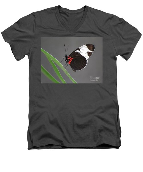 Men's V-Neck T-Shirt featuring the photograph Butterfly  by Tam Ryan