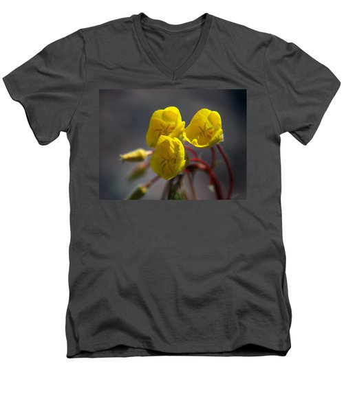 Men's V-Neck T-Shirt featuring the photograph Desert Evening Primrose by Joe Schofield