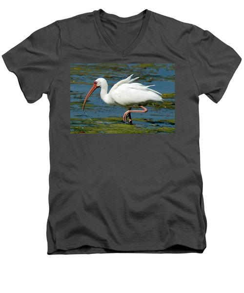 Ibis 2 Men's V-Neck T-Shirt by Joe Faherty