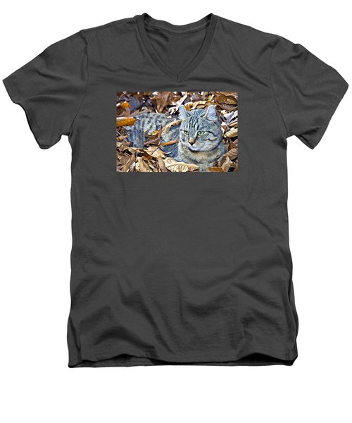 Men's V-Neck T-Shirt featuring the photograph Kitten In Leaves by Susan Leggett