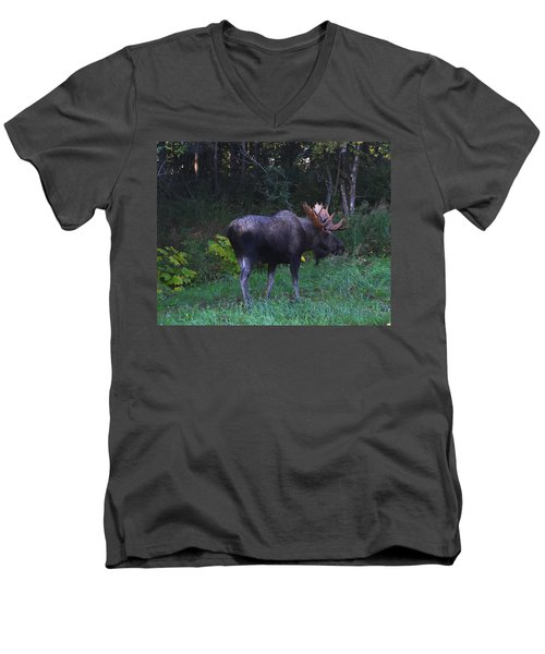 Men's V-Neck T-Shirt featuring the photograph Morning Light by Doug Lloyd