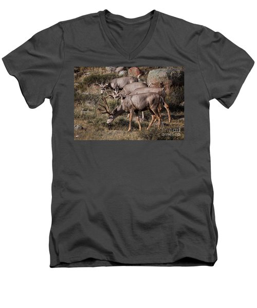 Mule Deer Bucks Men's V-Neck T-Shirt
