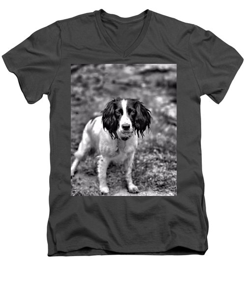 Springer Spaniel Men's V-Neck T-Shirt by Marlo Horne