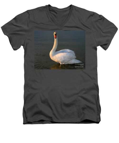Men's V-Neck T-Shirt featuring the photograph Swan by Odon Czintos