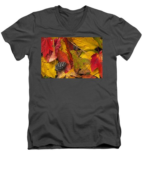 Autumn Colors Men's V-Neck T-Shirt by Andrew Soundarajan