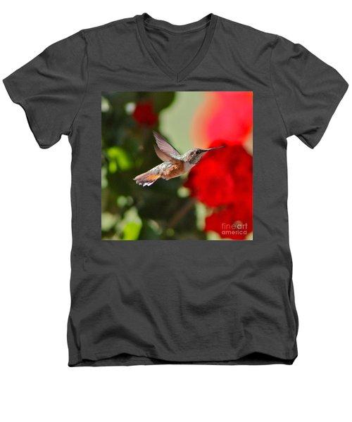 Hummingbird 3 Men's V-Neck T-Shirt by Pamela Walrath