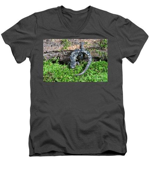 Slimy Salamander Men's V-Neck T-Shirt by Ted Kinsman
