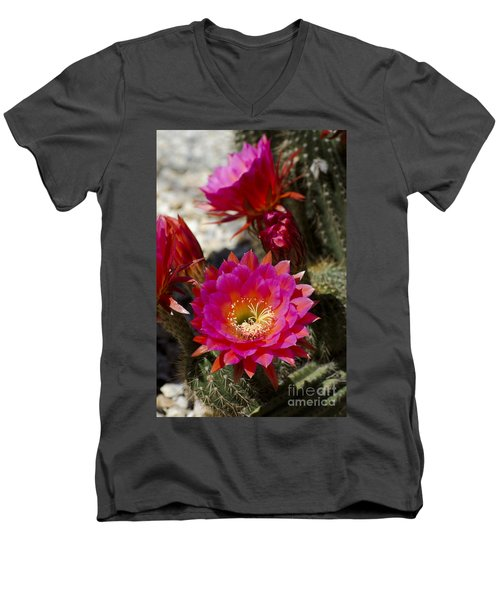 Pink Cactus Flowers Men's V-Neck T-Shirt