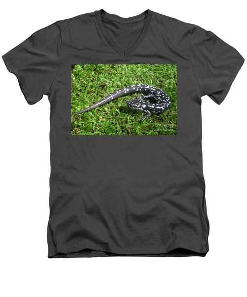 Slimy Salamander Men's V-Neck T-Shirt by Ted Kinsman