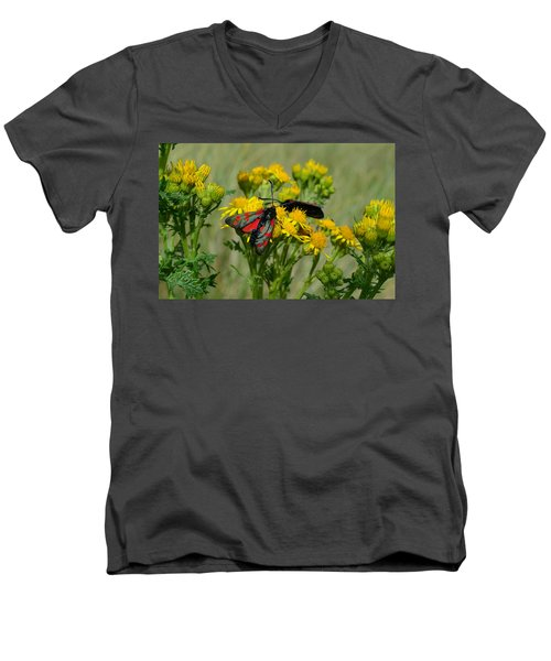 Men's V-Neck T-Shirt featuring the photograph 6 Spot Burnet by Barbara Walsh