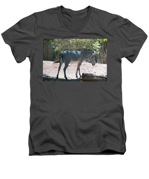 Lincoln Park Zoo In Chicago Men's V-Neck T-Shirt