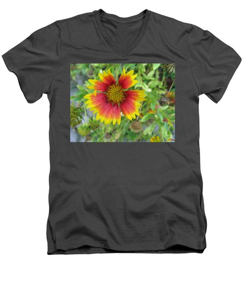 A Beautiful Blanket Flower Men's V-Neck T-Shirt by Ashish Agarwal