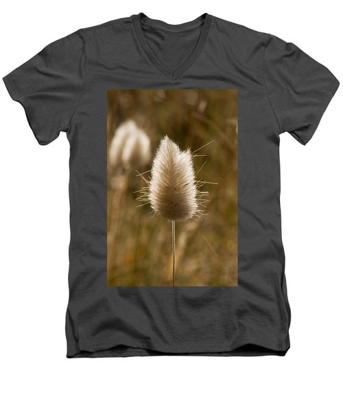A Beautiful Seed Pod With Beautiful Sun Reflection Men's V-Neck T-Shirt
