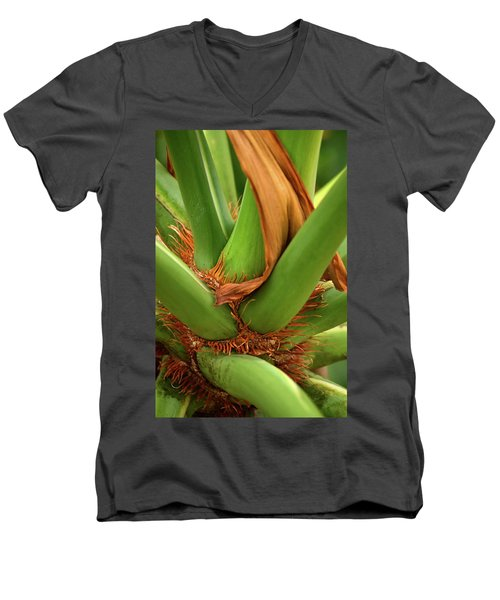 Men's V-Neck T-Shirt featuring the photograph A Palmetto's Elbows by JD Grimes