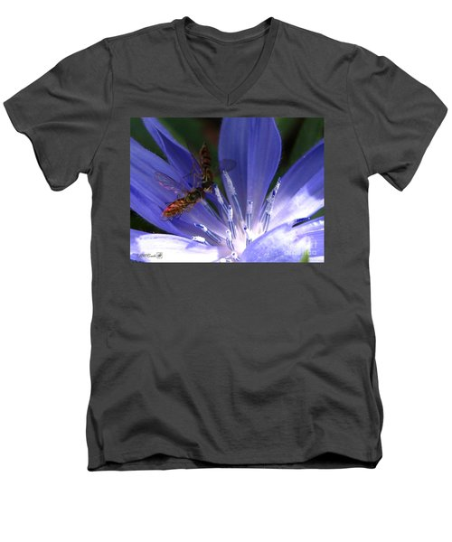 Men's V-Neck T-Shirt featuring the photograph A Quiet Moment On The Chicory by J McCombie