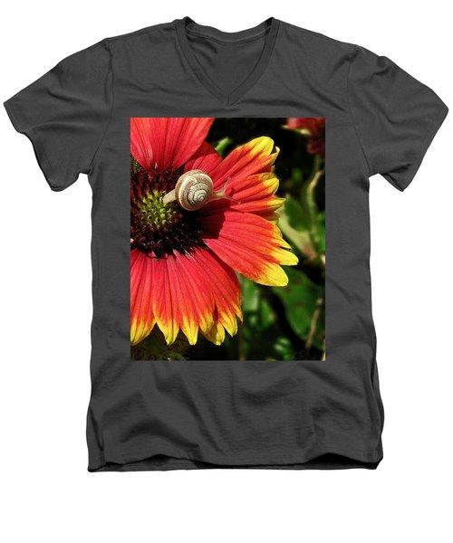 A Snail's Pace Men's V-Neck T-Shirt