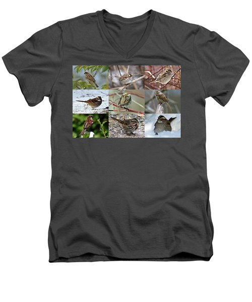 A Study In Sparrows Men's V-Neck T-Shirt